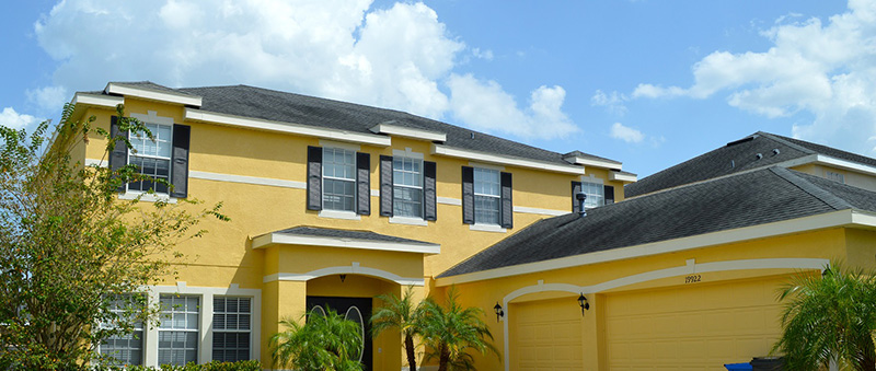 Painting Services Tampa Painting Contractor Carpet Cleaning